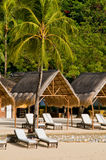 Exotic Tropical Beach Beds Royalty Free Stock Photography