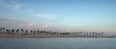 Exotic tropical beach. Coast with palms - Ha Long Bay - Vietnam Royalty Free Stock Photos