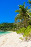 Exotic tropical beach with turquoise water Stock Image