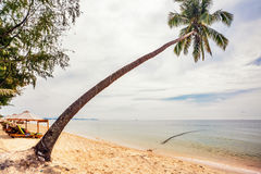 Exotic tropical beach under gloomy sky Royalty Free Stock Photography