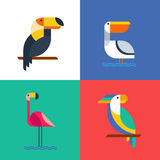 Exotic tropical birds flat style logo icons. Stock Photography