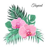 Exotic tropical bouquet orchid leaves. Bouquet composition of exotic tropical flowers and green jungle tree leaves. Orchid floral garland foliage surrounded by Royalty Free Stock Photos