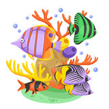 Exotic Tropical Fish Illustration. Exotic tropical fish concept with fish and corals flat vector illustration Royalty Free Stock Images