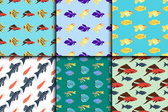 Exotic tropical fish seamless pattern colors underwater ocean species aquatic nature flat isolated vector illustration Royalty Free Stock Photo
