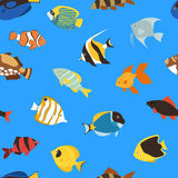 Exotic tropical fish underwater ocean or aquarium aquatic nature seamless pattern background vector Royalty Free Stock Photography