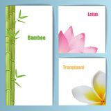 Exotic tropical flowers invitation card layout Stock Image