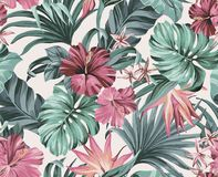 Exotic tropical flowers in pastel colors Stock Photos