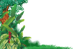 Exotic tropical forest. Illustration of exotic tropical forest Stock Image