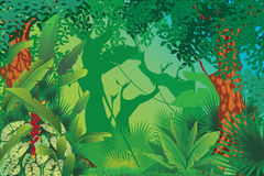 Exotic tropical forest. Illustration of exotic tropical forest Stock Photo