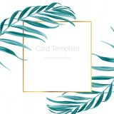 Exotic tropical palm leaves frame card template. Exotic tropical forest jungle green palm tree leaves branch. Rectangular square golden border frame. Fern Royalty Free Stock Photography