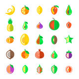 Exotic tropical fresh fruits flat style vector icons set Royalty Free Stock Images