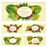 Exotic tropical fresh fruits vector banners set Royalty Free Stock Photos