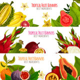 Exotic tropical fresh fruits vector banners set Royalty Free Stock Image