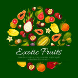 Exotic tropical fresh fruits vector poster Stock Photography