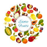 Exotic and tropical fresh fruits vector poster. Exotic fruits. Vector poster of tropical fresh grapefruit or red orange, guava and durian, juicy longan and figs Royalty Free Stock Images
