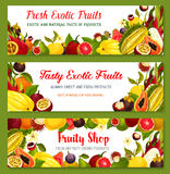 Exotic tropical fruit frame and border banner set Royalty Free Stock Photo