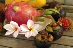 Exotic tropical fruits Stock Images