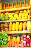 Exotic tropical fruits collage display window shop, Asia Royalty Free Stock Photos