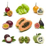 Exotic tropical fruits isolated on white background stock images