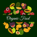 Exotic tropical fruits round symbol Stock Photos