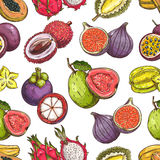 Exotic tropical fruits seamless pattern. Fruits pattern. Vector seamless background of fresh exotic and tropical fruits. Whole and cut sliced durian, figs Royalty Free Stock Images