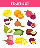 Exotic tropical fruits vector isolated icons set Stock Images
