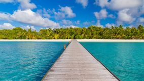 Maldives island beach background. Vacation and holiday with palm trees and tropical island beach Royalty Free Stock Photos