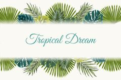 Exotic tropical leaves top bottom border frame. Exotic tropical jungle rainforest bright green turquoise palm tree monstera leaves border frame template on white Royalty Free Stock Image