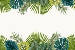 Exotic tropical leaves top bottom border frame Stock Photos