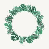Exotic tropical leaves wreath border frame green. Exotic tropical jungle rainforest round circle wreath border frame. Bright green palm tree and monstera leaves Royalty Free Stock Photo