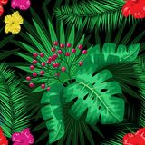 Exotic tropical nature environment repeating pattern background. Seamless repeating jungle rainforest summer green plants, flowers and fern background Royalty Free Stock Photos