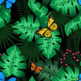 Exotic tropical nature environment repeating pattern background. Seamless repeating jungle rainforest summer green plants, butterfly and fern background Stock Image