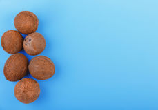 Exotic tropical nuts on the left side. Natural, organic whole coconuts on a blue background. Six fresh cocos, top view. Top view of exotic and sweet coconuts on Royalty Free Stock Images