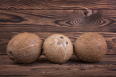 Exotic, tropical and organic coconuts on a dark brown wooden background. Two whole and healthy nuts. Bright brown coconuts. Stock Photography