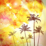 Exotic tropical palm trees  with fantasy sunset background . Hig. Hly detailed  and editable Stock Photography