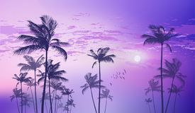 Exotic tropical palm trees  at sunset or moonlight, with cloudy Royalty Free Stock Photography