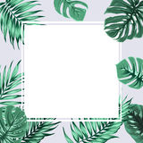 Exotic tropical rectangle square border frame grey Royalty Free Stock Image