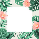 Exotic tropical square border frame beige camelia Royalty Free Stock Images