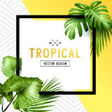 Exotic tropical summer frame Stock Image
