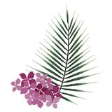 Exotic tropical vector leaf. Branch of flower. Romantic illustration. Natural design logo. Exotic tropical vector leaf. Branch of flower. Romantic illustration Royalty Free Stock Image