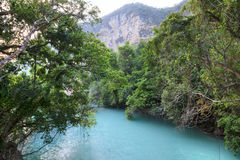 Exotic turquoise blue pool in tropical canyon jungle