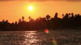 Exotic unawatuna beach, sri lanka stock video