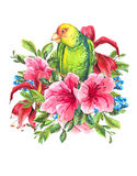 Exotic Vintage Card with Tropical Flowers, Parrots Stock Image