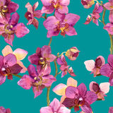Exotic watercolor painted template with repeated orchids flowers Stock Photo