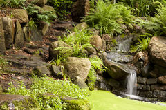 Exotic waterfall in the garden Royalty Free Stock Photos