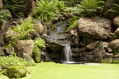 Exotic waterfall in the garden Stock Images