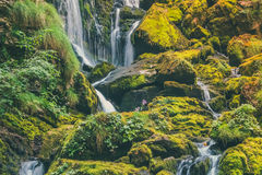 Exotic waterfall in the jungle. An exotic waterfall in the jungle Royalty Free Stock Image