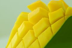 Exotic yellow mango Royalty Free Stock Photography