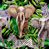 Exotic zebra and elephant wild animals pattern in a watercolor style. Royalty Free Stock Images
