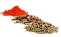 Exotically spice mix Royalty Free Stock Photo
